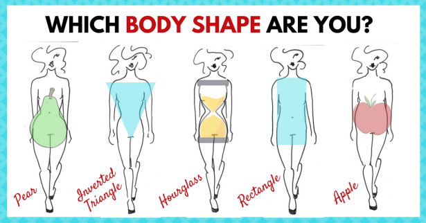 Which-body-shape-are-you_