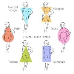 women-s-body-types